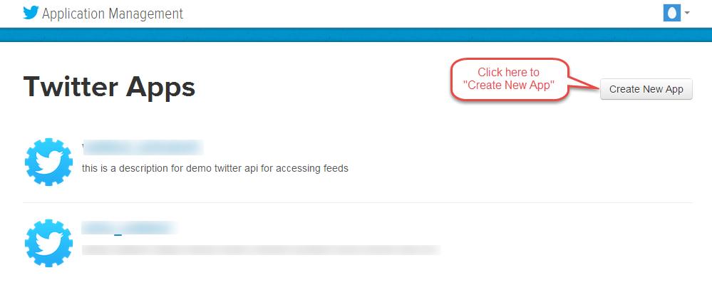 Twitter Create App 1