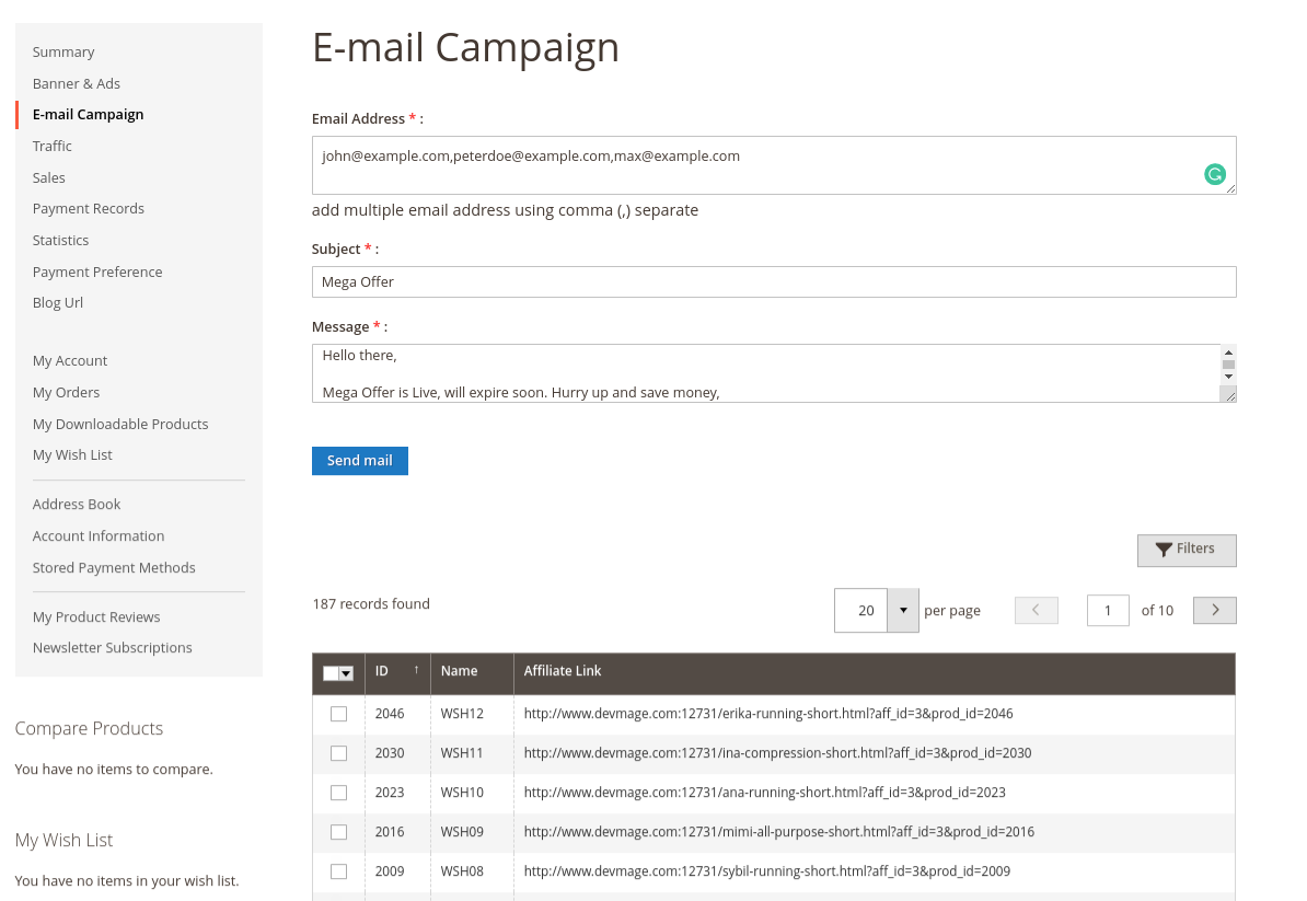 Email-Campaign-3