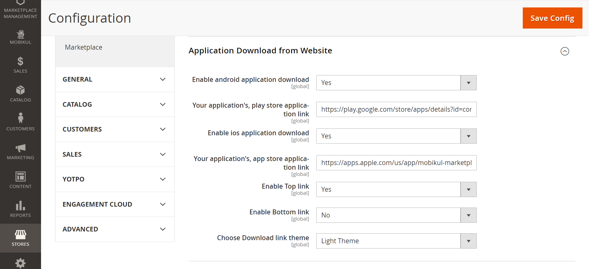 Application download from website