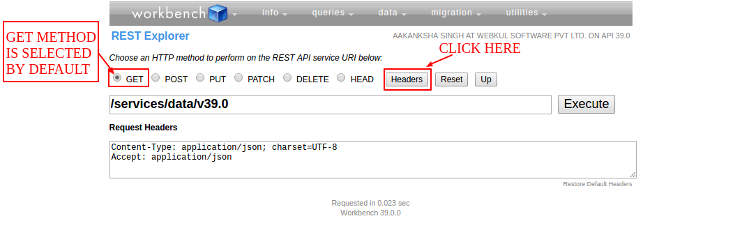 How to run REST API through Workbench Salesforce
