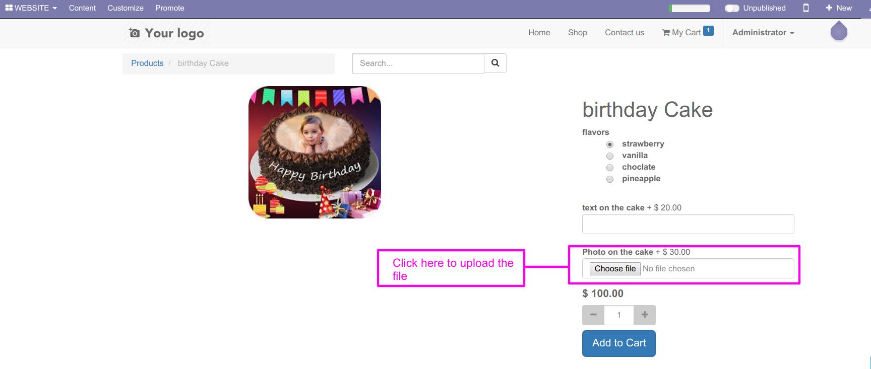 Odoo Website Custom Options