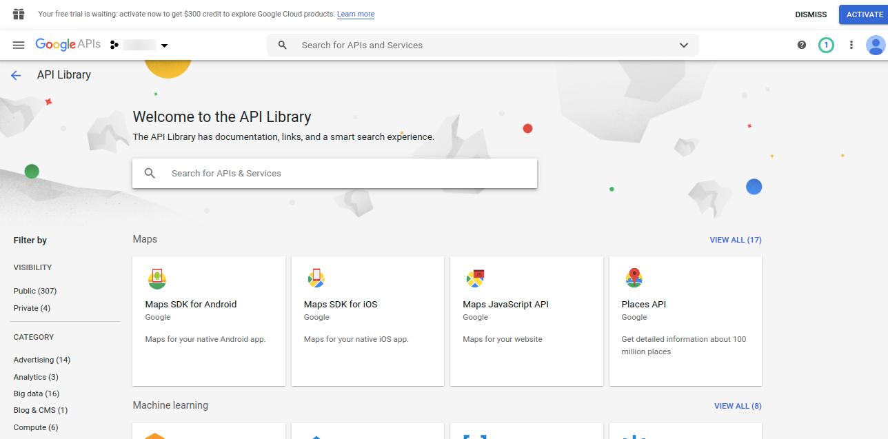 API-Library-Project2-Google-API-Console-3