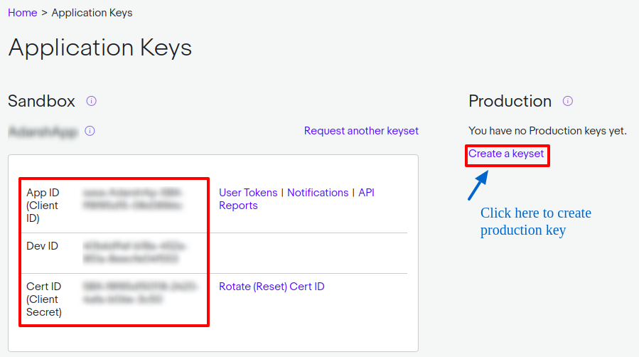 Application Keys in eBay