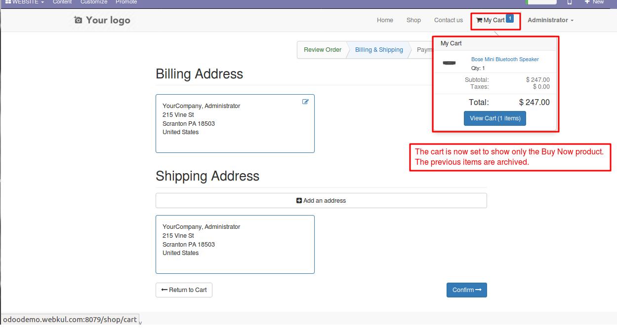 Enabling Buy Now option in Odoo website 5