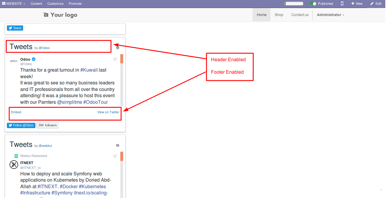 Integrating Twitter accounts with Odoo Website 3