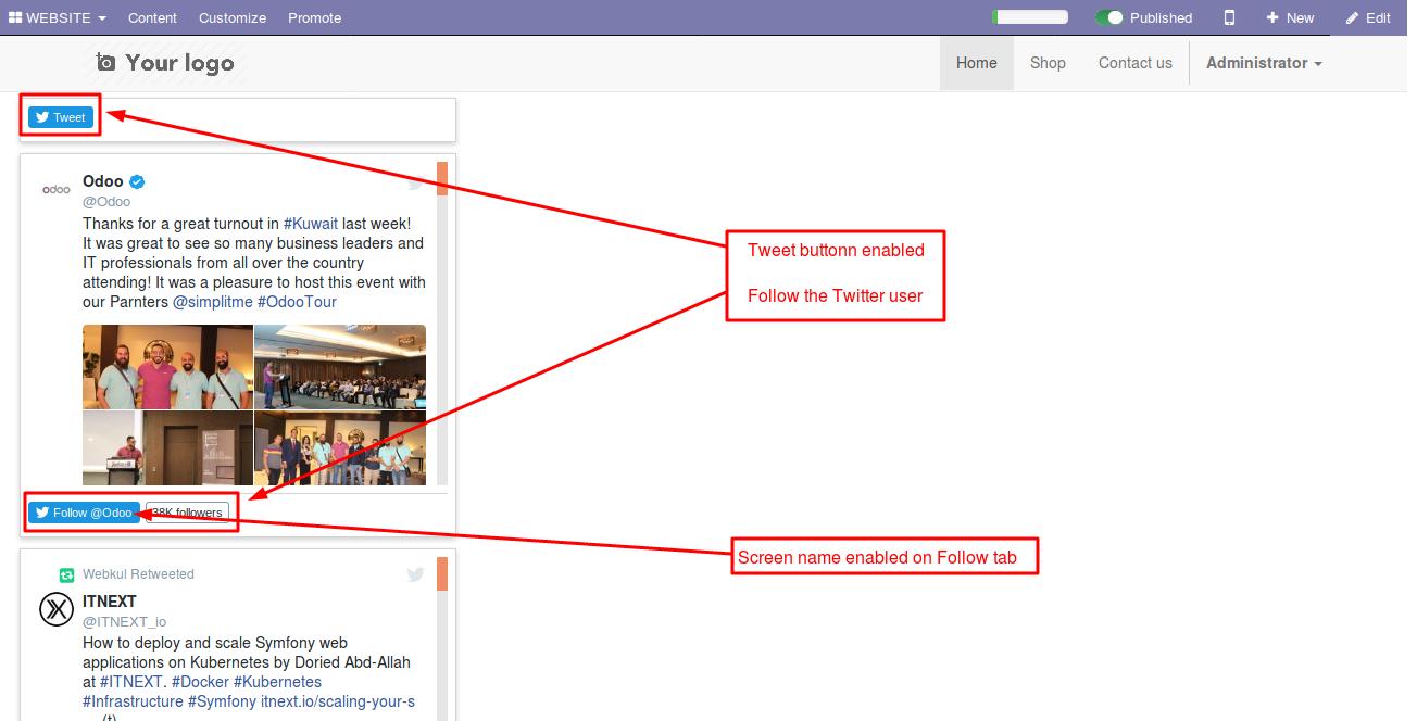 Integrating Twitter user handles with Odoo website 5