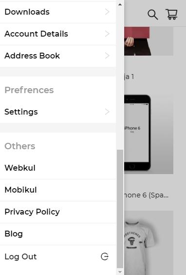other_section_progressive_web_app_webkul