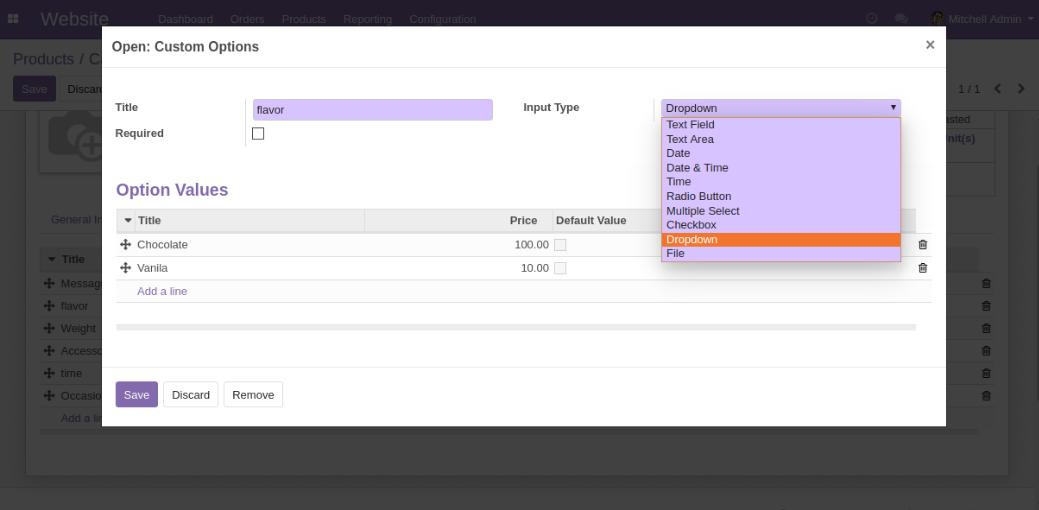 Create custom options for Odoo Website